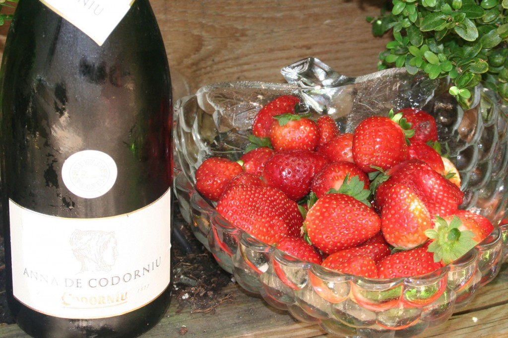 Fresas al cava - ingredientes