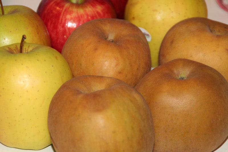 Receta sana con muchas manzanas